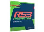 Voir Table Tennis Rubbers Andro Rasanter R53