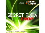 Voir Table Tennis Rubbers Sauer Tröger Secret Flow